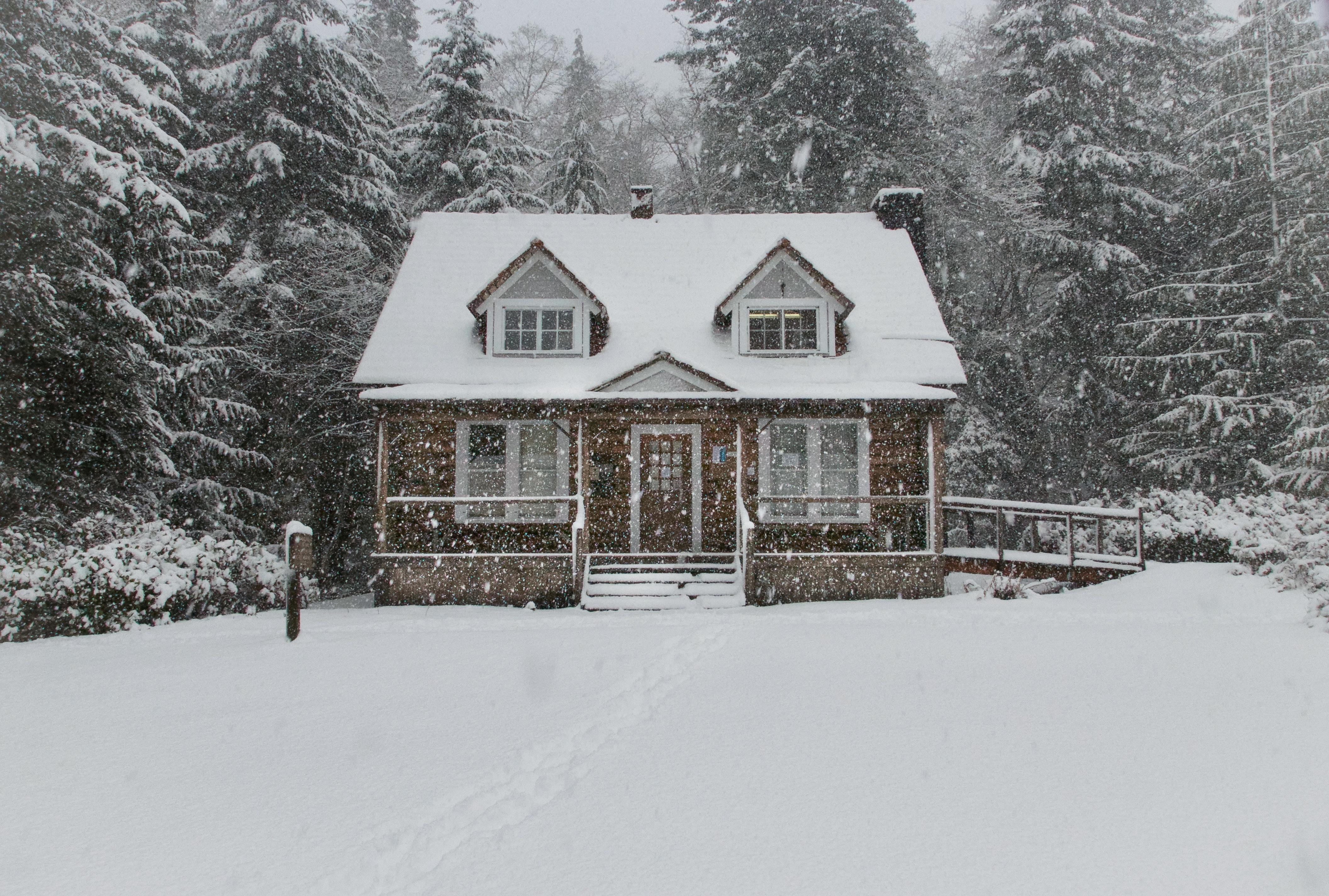 Аренда жилья на Airbnb: 8 уютных домиков для идеального зимнего отдыха в США