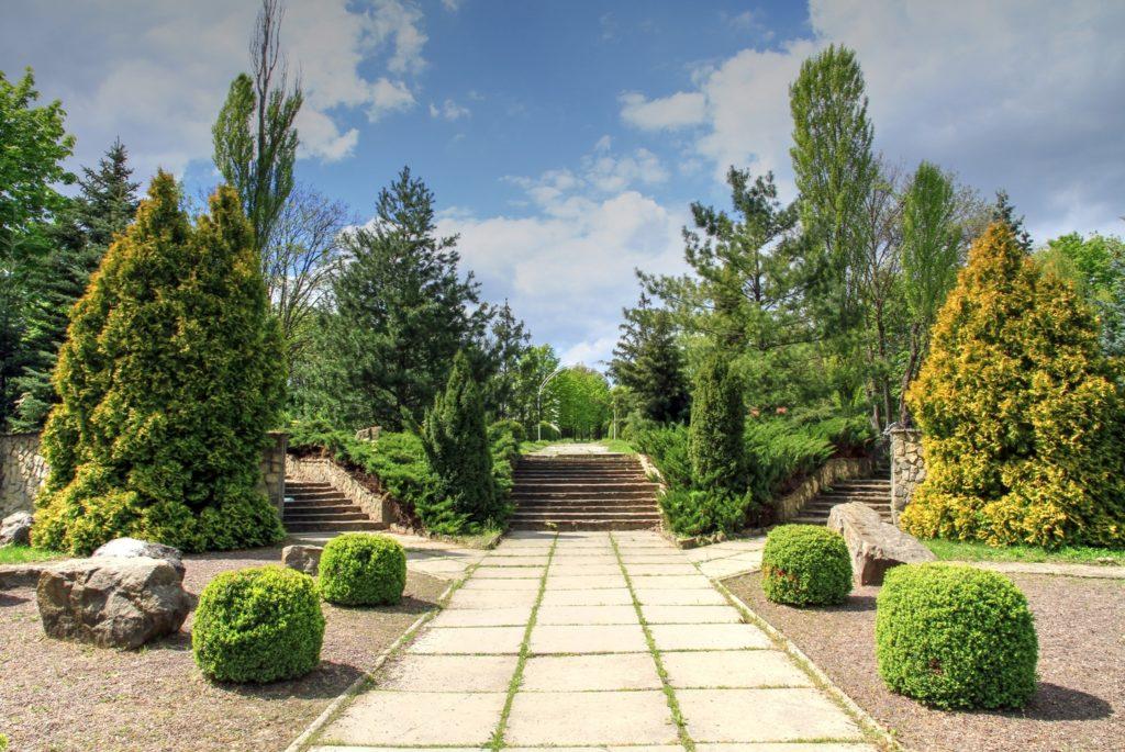 Ботаника Кишинев