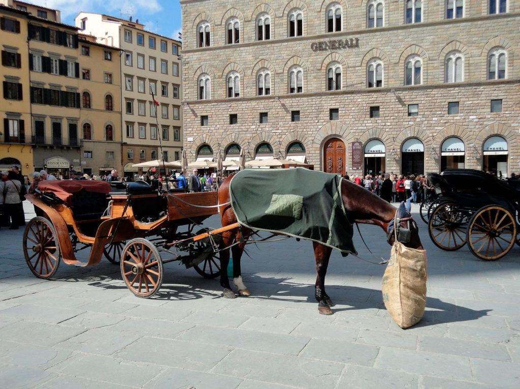 Цены во Флоренции, Италия на транспорт